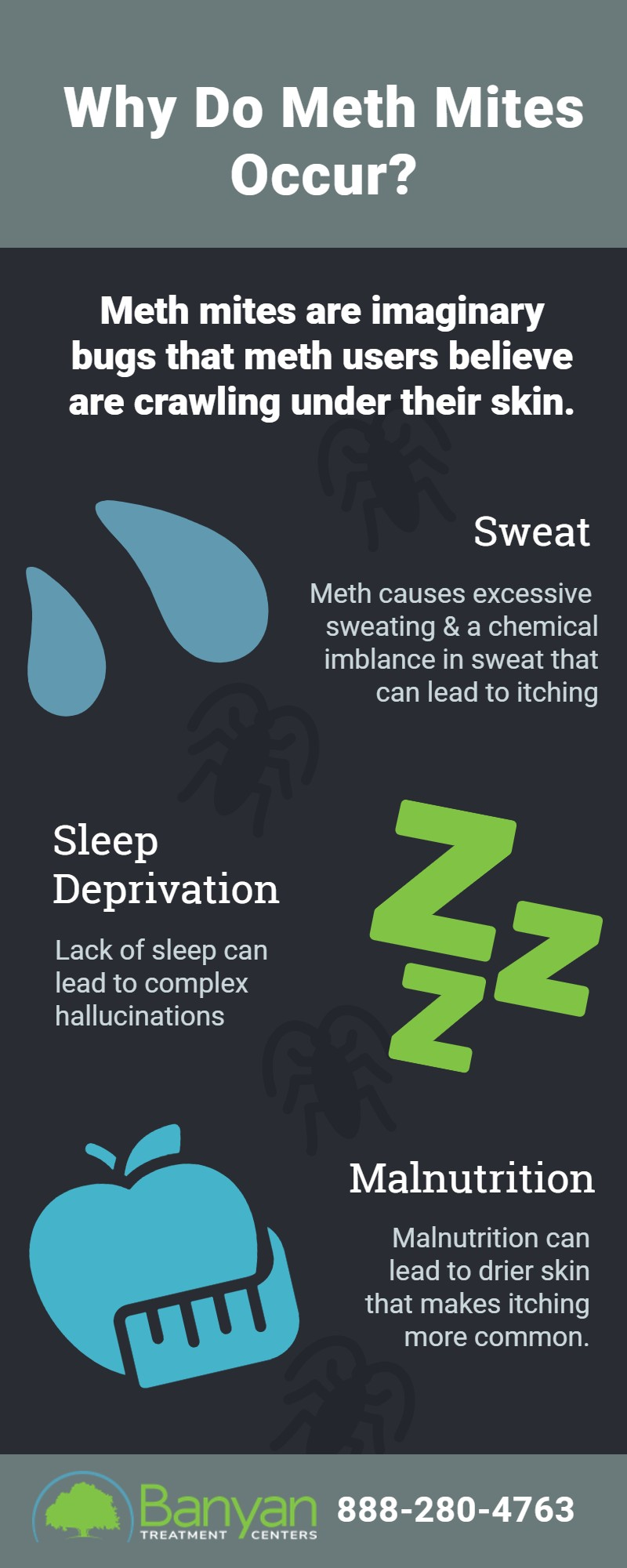 What Are Meth Mites & Why Do They Occur?